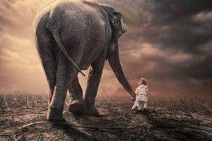 Мастер-класс по масляной живописи «Слоны мастихином»