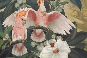 Мастер-класс по масляной живописи «Птицы Jessie Arms Botke»