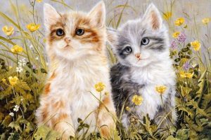 Мастер-класс  «Мягкие и тёплые котята» (пастель, акварель, акрил или смешанная техника)