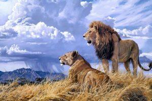 Мастер-класс по масляной живописи «Лев»