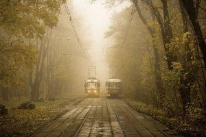 Мастер-класс по масляной живописи «Осенний трамвай»