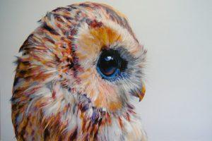 Мастер-класс по масляной живописи «Очаровательные совы по мотивам работ John Pusateri»