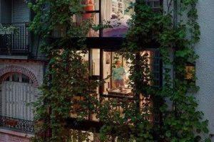 Мастер-класс по масляной живописи «Окна Парижа»