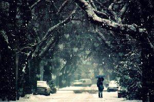Мастер-класс по масляной живописи «Влюбленные парочки зимой»