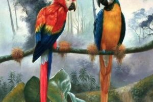 Мастер-класс по масляной живописи «Попугаи»