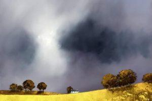 Мастер-класс по масляной живописи «пейзажи по мотивам работ Барри Хилтона»
