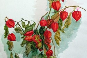Мастер-класс по масляной живописи «Фонарики физалиса»