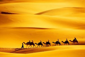 Мастер-класс по масляной живописи «Пустыня. Караван»
