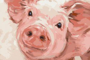 Мастер-класс по масляной живописи «Рисуем свинок в стиле поп-арт»